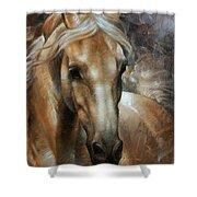 Head Horse 2 Shower Curtain