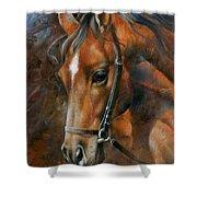 Head Horse Shower Curtain