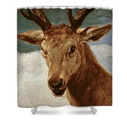 Head Of A Stag Shower Curtain
