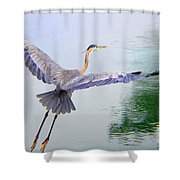 Heading For The Treetops Shower Curtain
