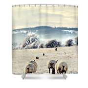 Heading Home Shower Curtain by Meirion Matthias