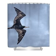 Heading South Shower Curtain