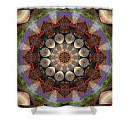 Healing Mandala 30 Shower Curtain