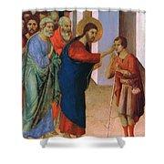 Healing The Man Born Blind Fragment 1311 Shower Curtain