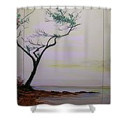 Health Wealth And Benevolence Shower Curtain