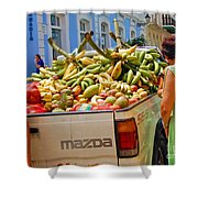 Healthy Fast Food Shower Curtain