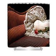 Heart And Rose Victorian Style Shower Curtain