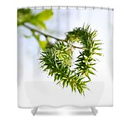 Heart In Nature Shower Curtain