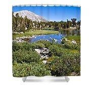 Heart Lake Folaige Shower Curtain
