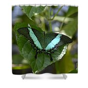 Heart Leaf Butterfly Shower Curtain