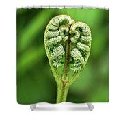 Heart Of A Fern Shower Curtain