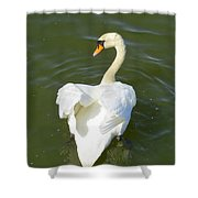 Heart Of A Swan Shower Curtain