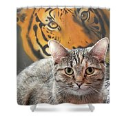 Heart Of A Tiger Shower Curtain