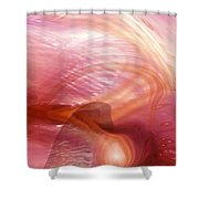 Heart Of Dreams Shower Curtain
