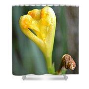 Heart Of Iris Shower Curtain