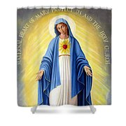 Heart Of Mary Shower Curtain