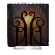Heart Of The Cemetery Shower Curtain