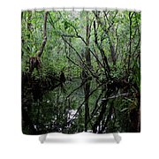 Heart Of The Swamp Shower Curtain