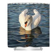 Heart Shaped Pride And Grace Shower Curtain