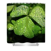 Heart Shaped With Water Drops Shower Curtain