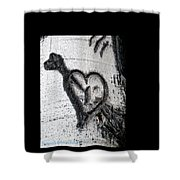 Heart Written In The Trees 3 Shower Curtain