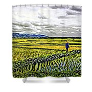 Heartland Oil Shower Curtain