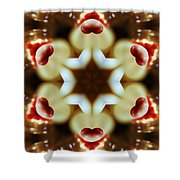 Hearts Afire Shower Curtain