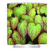 Hearts In Nature Shower Curtain