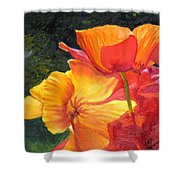 Hearts Of Poppies Shower Curtain