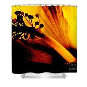 Heat Shower Curtain by Linda Shafer