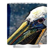 Heat Of A Day Shower Curtain