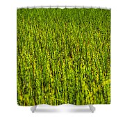 Heather Lake Grass 2 Shower Curtain