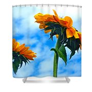 Heaven Above ... Shower Curtain