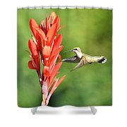 Heaven Is A Hummer Shower Curtain