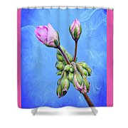Nature Botanical Floral Pink Flowers Geranium Blooms  Shower Curtain
