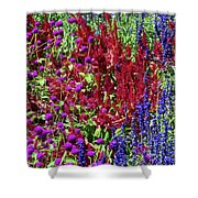 Heavenly Chaos Shower Curtain