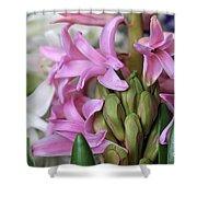 Heavenly Hyacinths Shower Curtain