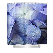 Heavenly Hydrangeas Shower Curtain