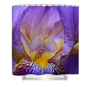 Heavenly Iris Shower Curtain