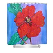Heavenly Scent Shower Curtain
