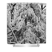 Heavy Burden Shower Curtain