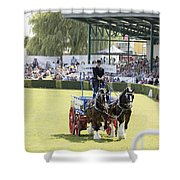 Heavy Horses Competition Shower Curtain