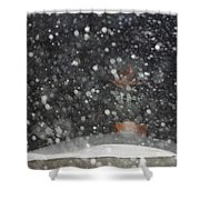 Heavy Snow Shower Curtain