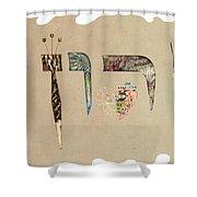 Hebrew Calligraphy- Yaron Shower Curtain