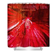 Hebrews 12 29 Shower Curtain