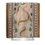 Hecate. The Moon Shower Curtain