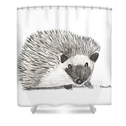 Hedgehog Painting Shower Curtain