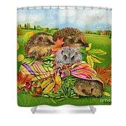 Hedgehogs Inside Scarf Shower Curtain