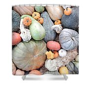 Heirlooms On Display #2 Shower Curtain