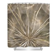 Held In Place Shower Curtain